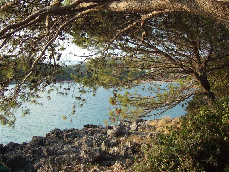 DAY 1 - Pržno, Luštica Peninsula