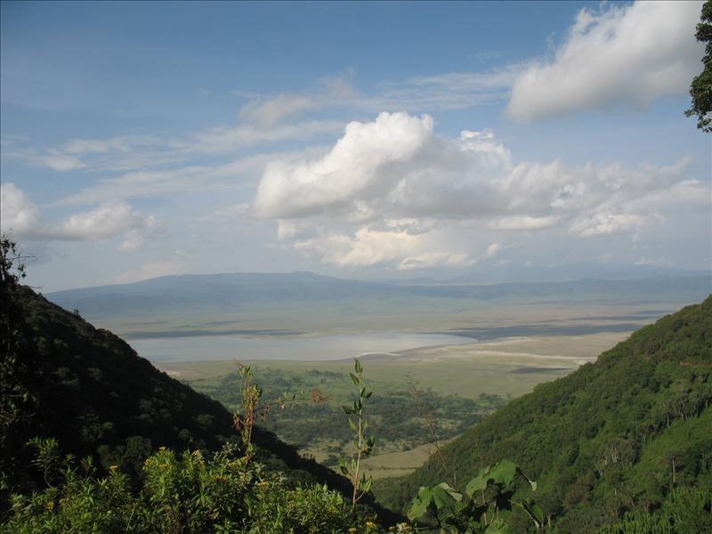 Ngorongoro•Tanzania