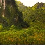 Viet Hai, Cat Ba Island