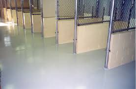 flooring for dog kennel.jpg