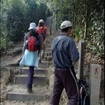 DSC_0803 到了自然教育徑(標誌桿13) 右上支路登仙姑峰.jpg