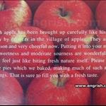 aomori-apple-pie.jpg