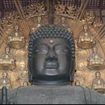 Nara trip (東大寺&春日の大社)