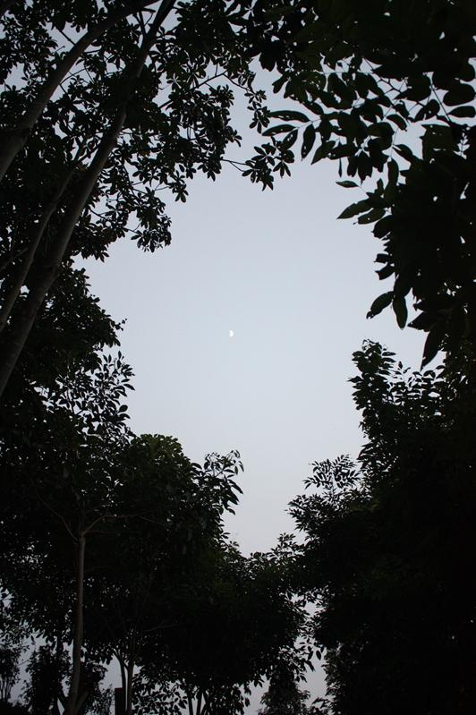 遙遠的月光
