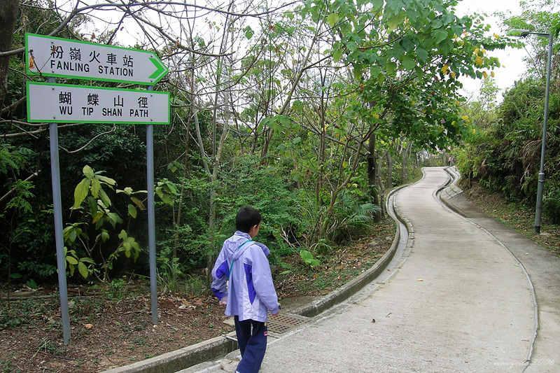 Wu Tip Shan Path 蝴蝶山徑