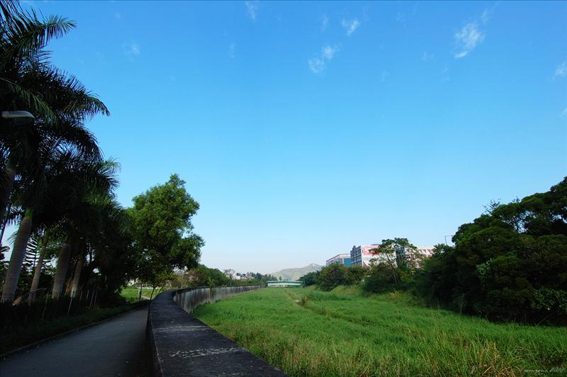 石上河 Shek Sheung River