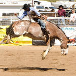 Cave Creek Rodeo 4-1-12 056.jpg