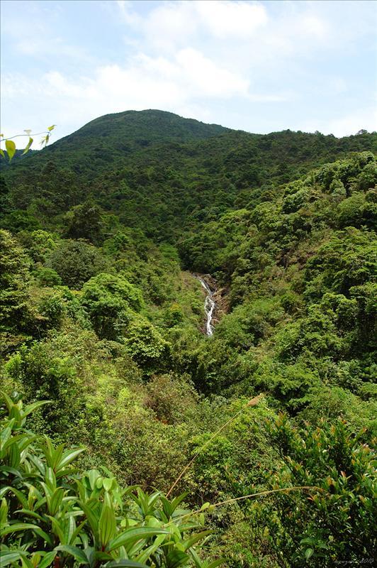 郊遊徑左望谷中秋楓石澗葫蘆瀑
