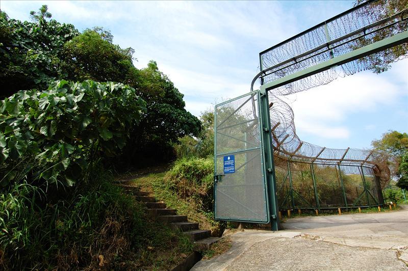 得月樓禁區閘口彎位處左轉入山坡山徑
