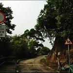 DSC8061 香港仔郊野公園布力徑入口.jpg