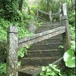 401登山步道 (4).JPG