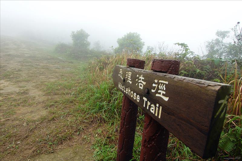 麥理浩徑第三段登雞公山 MacLehose Trail Section 3