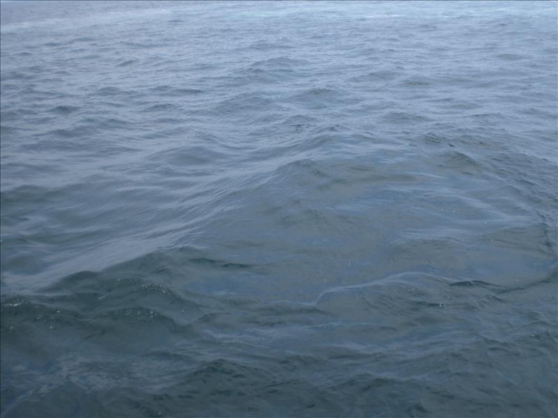 ringvorm in water als kenmerk waar een walvis heeft gedoken. Werd door walvisvaarders gebruikt om te herkennen waar walvissen zijn