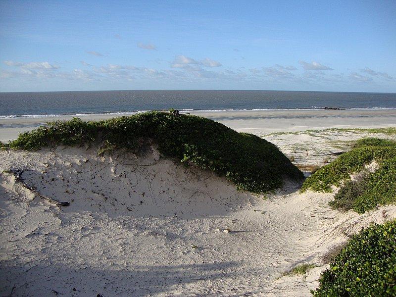 Ilha de Algodoal_Pa, img3