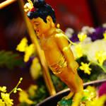 20140506 跑馬地東蓮覺苑佛誕浴佛法會 Tung Lin Kok Yuen  Buddha