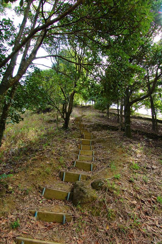 過了紀念亭接上登山路