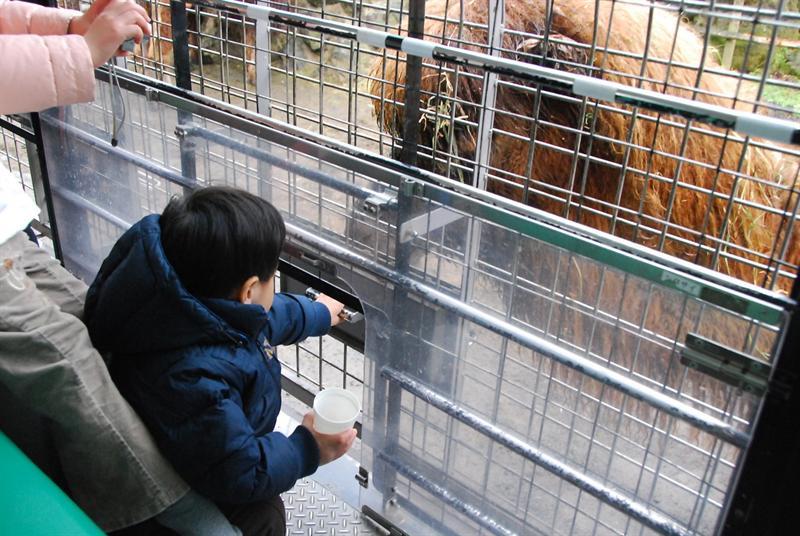 關上餵食盒就可以讓外面的動物吃到食物