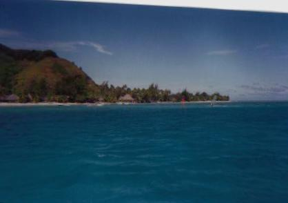 MORREA,COOK ISLANDS
