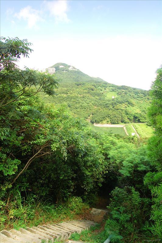 可看見薄扶林水塘及奇力山