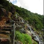接上奇力山橫山徑 Trail circling Mount Kellett