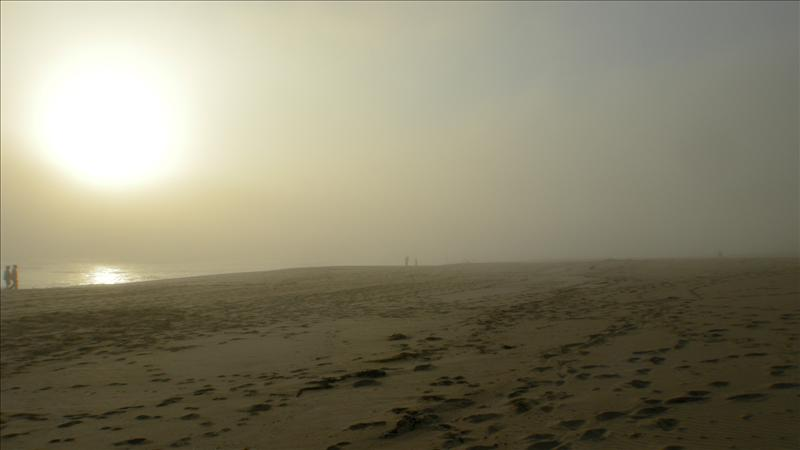 Foggy Johanna's beach