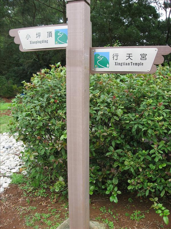 向左走,向右走
