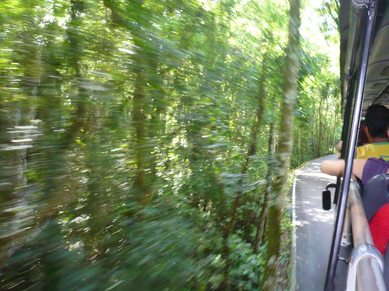Auf dem Weg zu den Wasserfällen - az úton a vízesésekhez