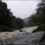 Kennedys Creek