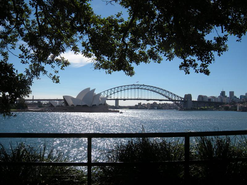 A beautiful view of the Harbour Bridge from the Botanical Gardens