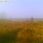 200811091429_00116.jpg