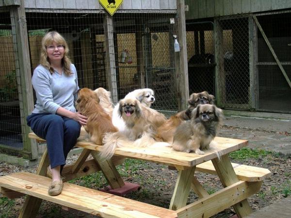 Debbie & the Tibetan Spaniels