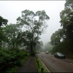 荃錦公路 Route Twisk