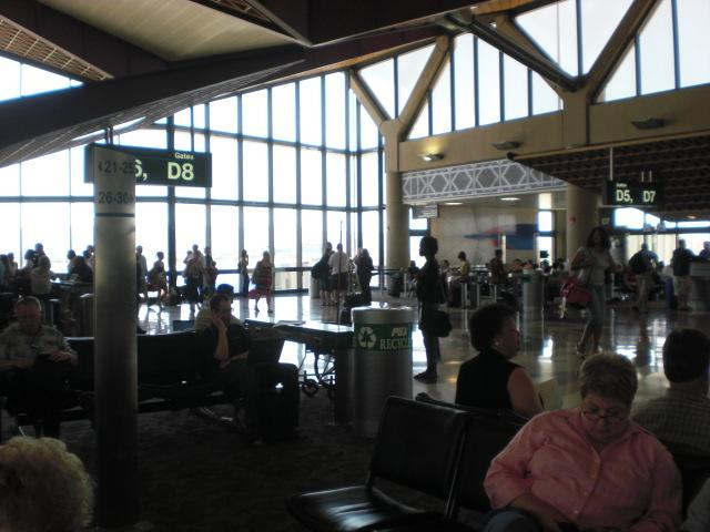 Sky Harbor. Birds living in the rafters