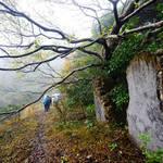 20131215 礦洞迷徑蓮花山 Mine Cave Lost Trail