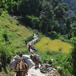 Annapurna Sanctuary 011.JPG