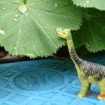 被遺忘的恐龍,小小侏儸記。