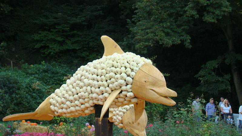 all this are made from pumpkins