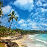 beaches in kerala.jpg