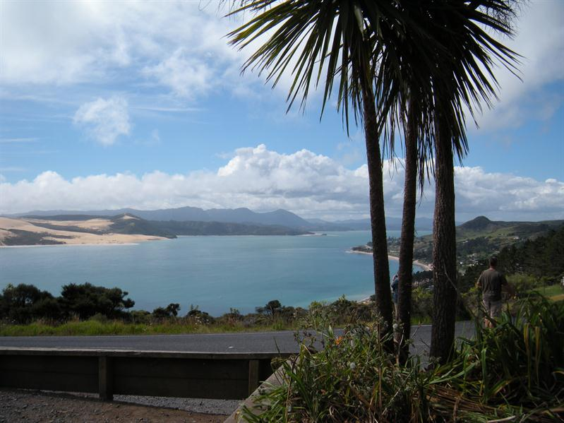 View across Hokianga Harbour