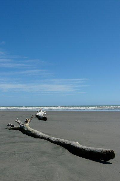 Himatangi Beach, Near my house, North Island, New Zealand