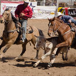 Cave Creek Rodeo 4-1-12 036.jpg