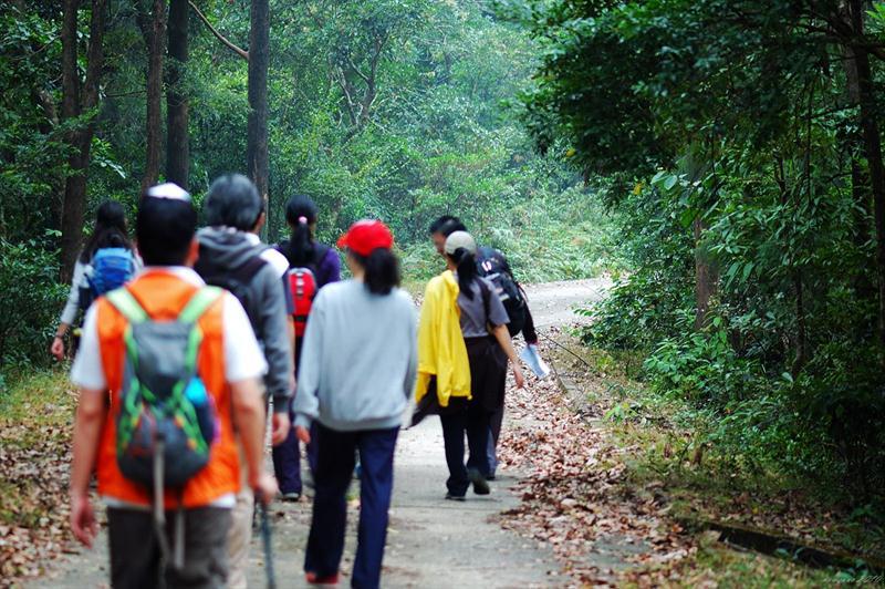 續行大埔滘林道長瀝尾段 Tai Po Kau Forrest Track Cheung Lek Mei Section