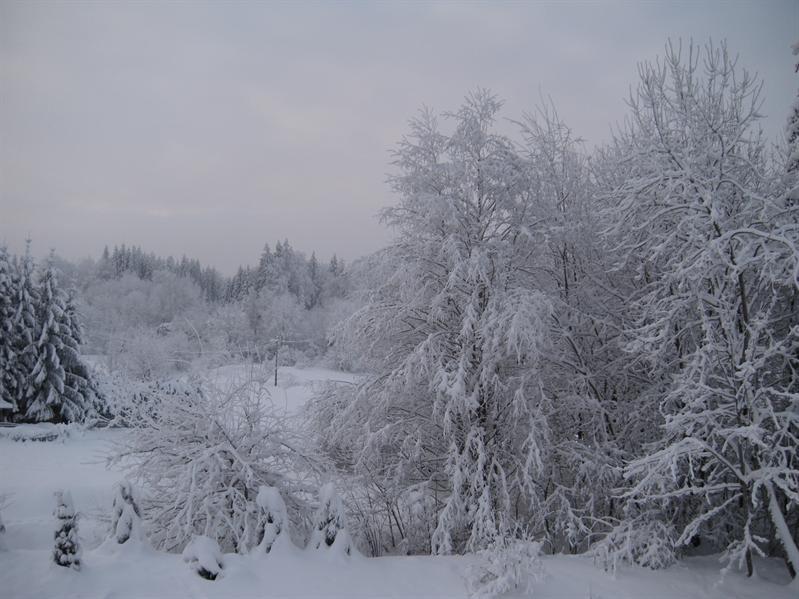 Garden of Chalet Coquelicot