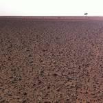 Piste near Sahara.JPG