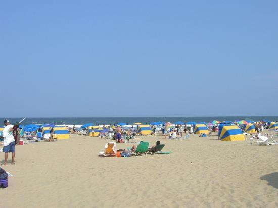 virginia-beach1.jpg