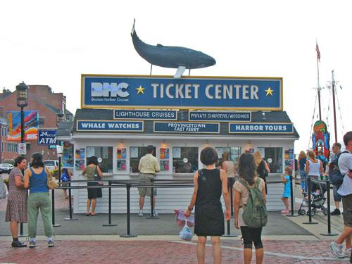 whale wathing counter