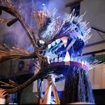 2012 大坑舞火龍 Tai Hang Fire Dragon