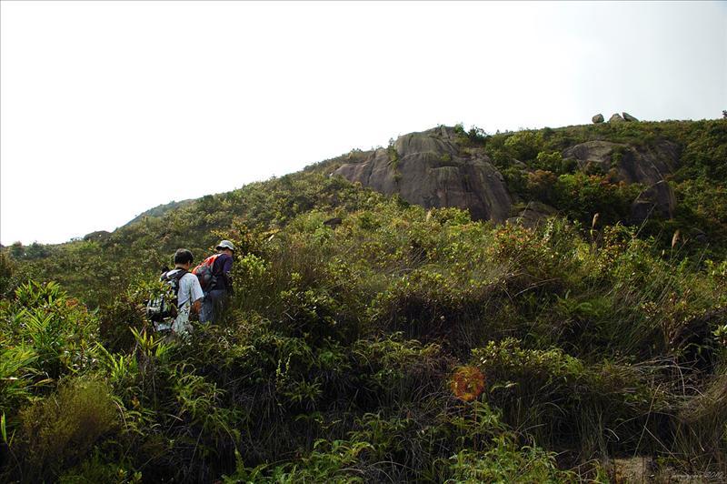 返轉頭搵行山隊行過嘅山路上山