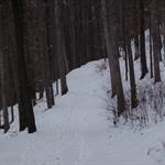 1-15-16-2011 025.jpg
