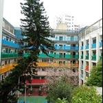 筲箕灣聖馬可小學